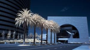 """Segerstrom Hall""- Costa Mesa,CA"
